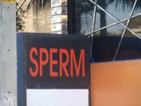 Sperm Disco Pubの写真