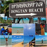 Dongtan Beach Image