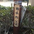 橋本町公園