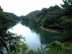 大牟田池自然公園