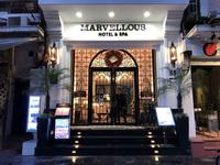 Hanoi Marvellous Hotel &a...