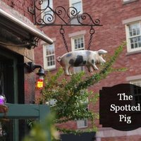Spotted Pig