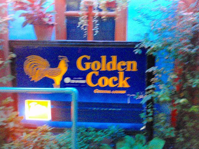 Golden cock Image