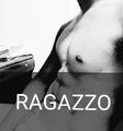 RAGAZZO(ラガッツォ)