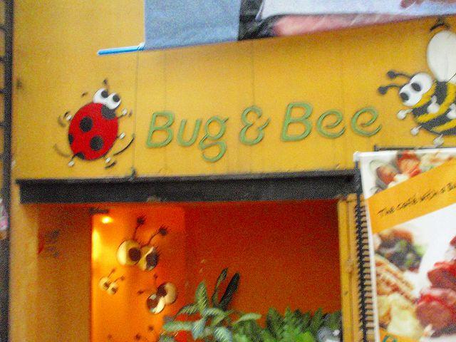 Bug & Beeの写真